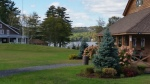 Snow Pond Community Music School